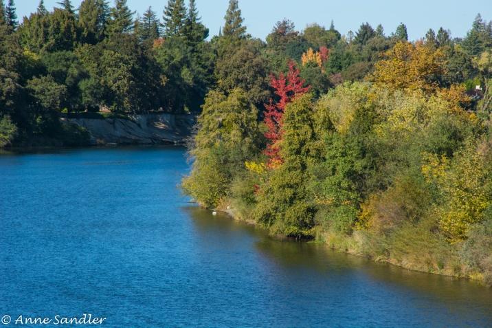 Sacramento does have Fall Foliage.