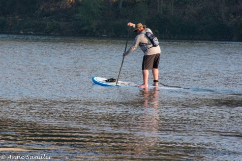 The paddle board is like a surf board. I'm sure his feet are cold.