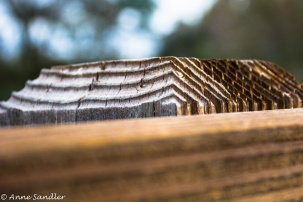 Close up of the bridge structure. Wood makes such great patterns.
