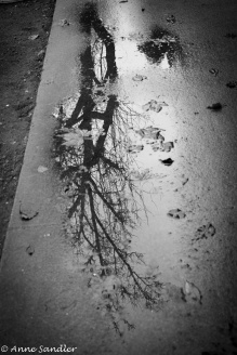 Puddle shooting.