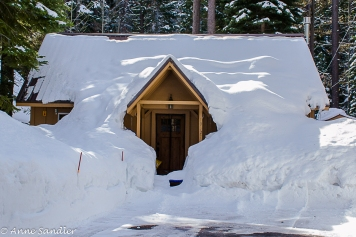 Now this small house is truly snowed in!