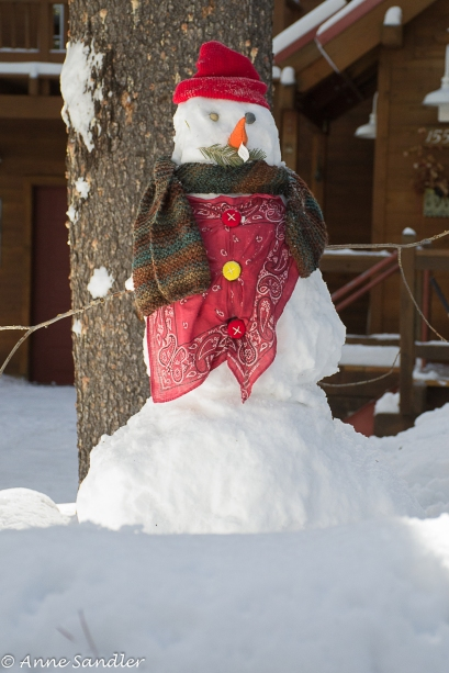 We talked to the man who's sons made this snowman and another. What fun!