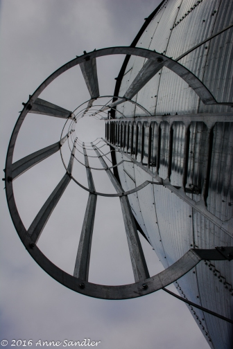 Looking up the ladder of the silo.