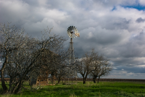 The sun came out just to light up the old windmill.