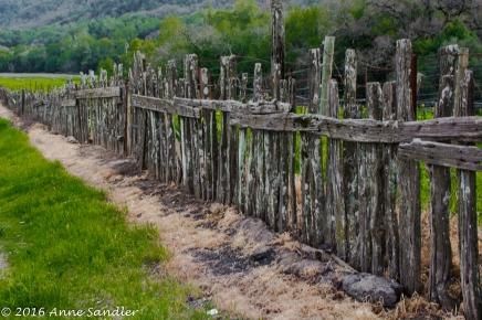 Rustic fencing.