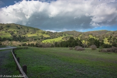At Sunol Regional Wilderness