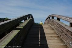 Another bridge.