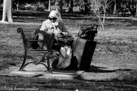 People are sometimes more interesting than the flowers at McKinley Park.