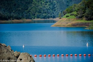 The Monticello Reservoir. Shot through the fence.