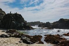 Wonderful California shoreline.