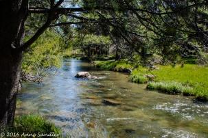 The stream again.