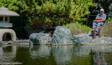 The rocks around the pond.