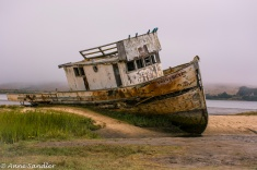 This is the Point Reyes an abandoned boat that has been a favorite of photographers. She's located in the small town of Inverness.