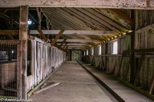 A barn at the Elk Preserve.