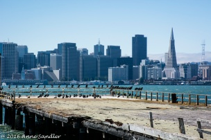 Looking across an old pier at San Francisco.