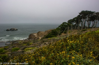 More from the Sutro Bath area.