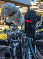 These animals are guarding the golf clubs!
