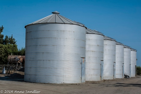 What farm picture would be complete without silos. Taken on the Voelz farm.