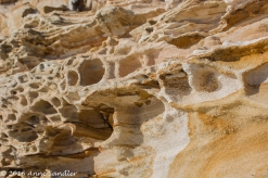 Look at the holes and textures in the rock.