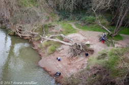 This area along the American River is popular with families and cyclists.