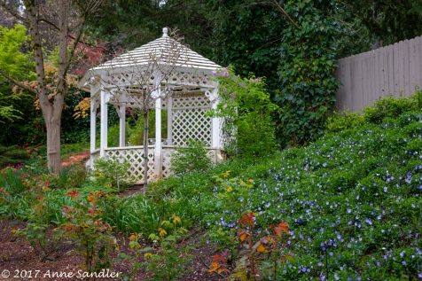 This gazebo is a lovely image.