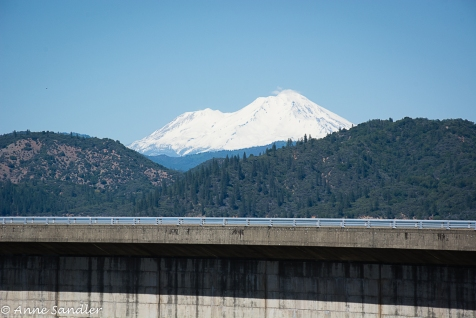 Snow covered Mt. Shasta as seen from the Dam.