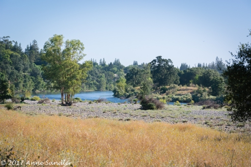 Near the American River.