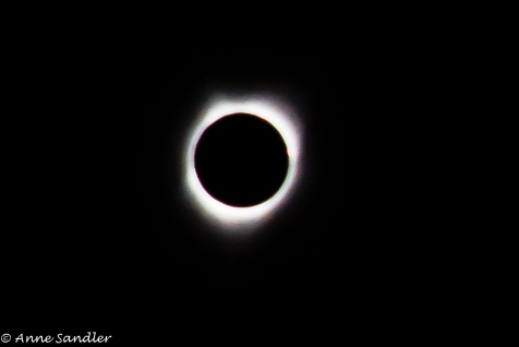 This was the best I could get during totality. I knew it would be difficult without a tripod because of diminished light.