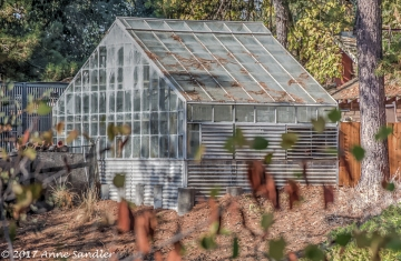 Green House HDR DSC_2997_8_9