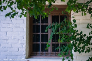I liked the natural framing on this window.