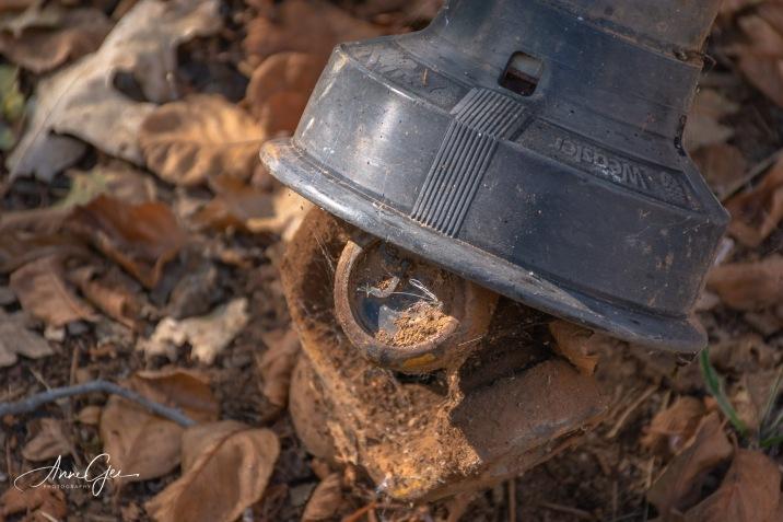 An old drain???